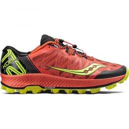 SALOMON Short Pulse H